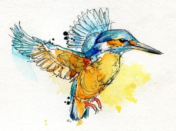watercolor-animals-by-abby-diamond-17.jpg