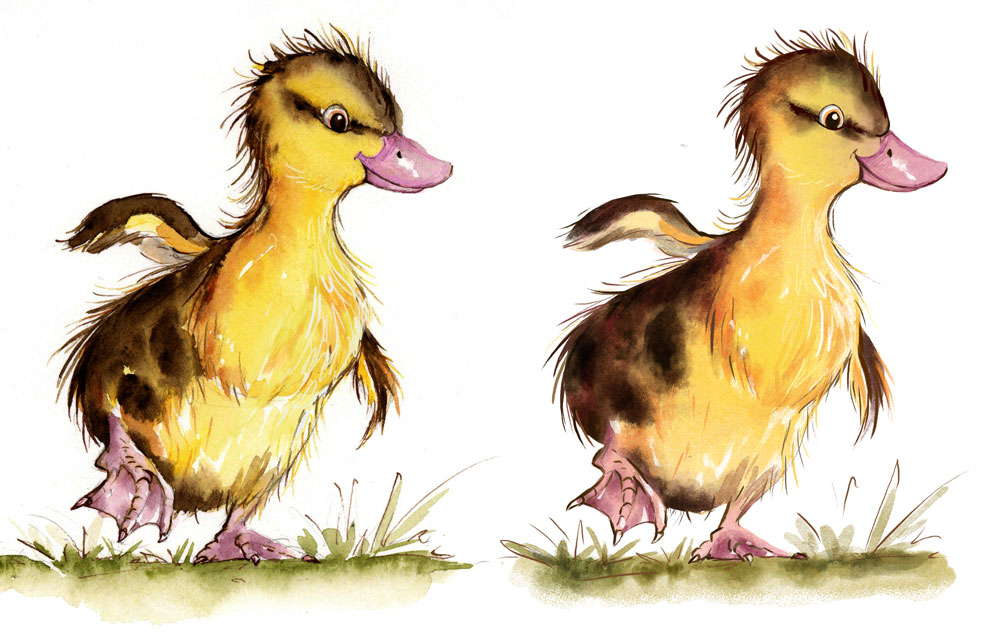 0_1468443256331_duckling_2-digital-web.jpg