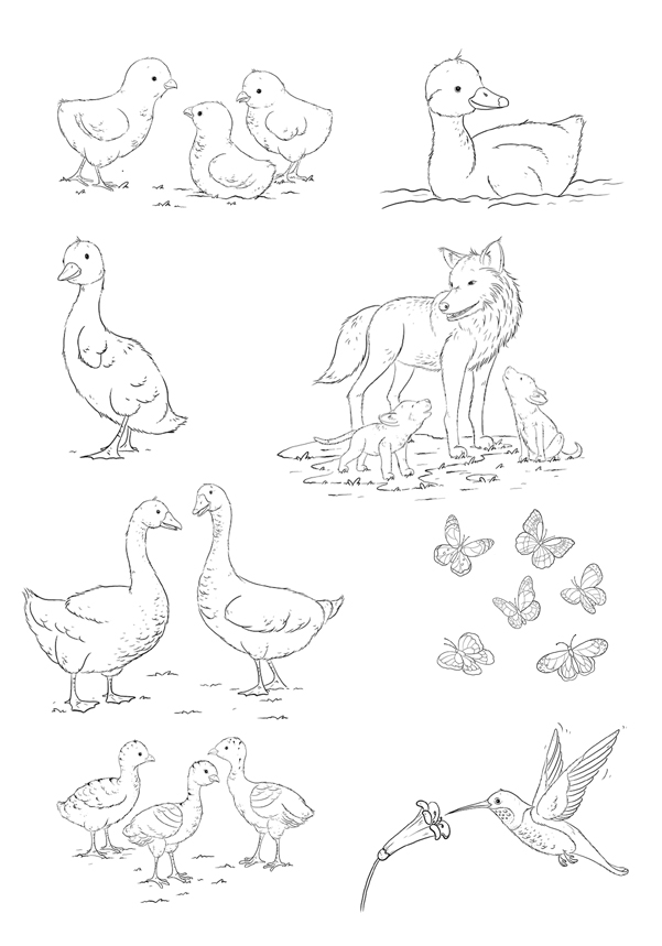 Line Drawings Of Wild Animals : Main inktober images svs forums