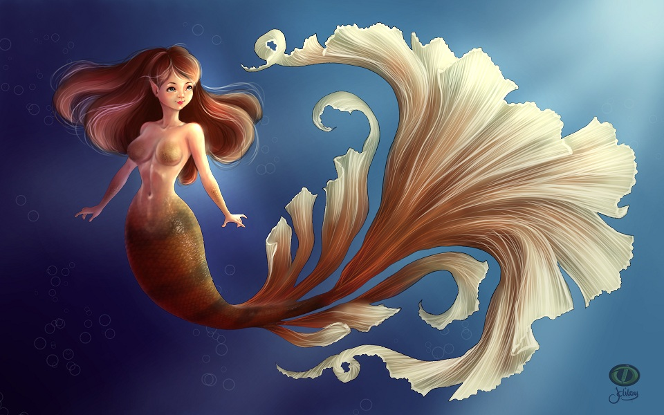 0_1495952961638_The Queen of Mermaids.jpg