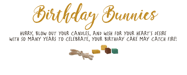 0_1520227779752_birthday bunnies behance.jpg