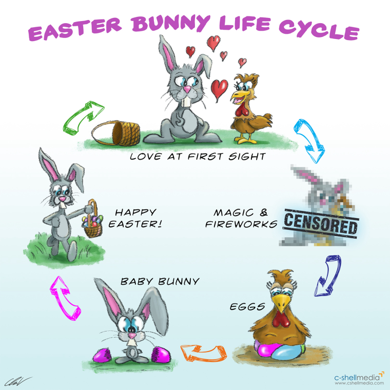 0_1522667409065_easte_bunny_lifecycle.jpg