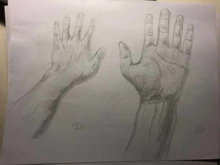 0_1523769666678_Hands 1 and 2.jpg