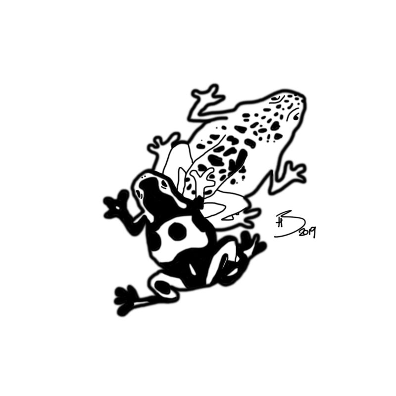 0_1546629342343_Day 1 Poison (Frogs) Line Art.jpg