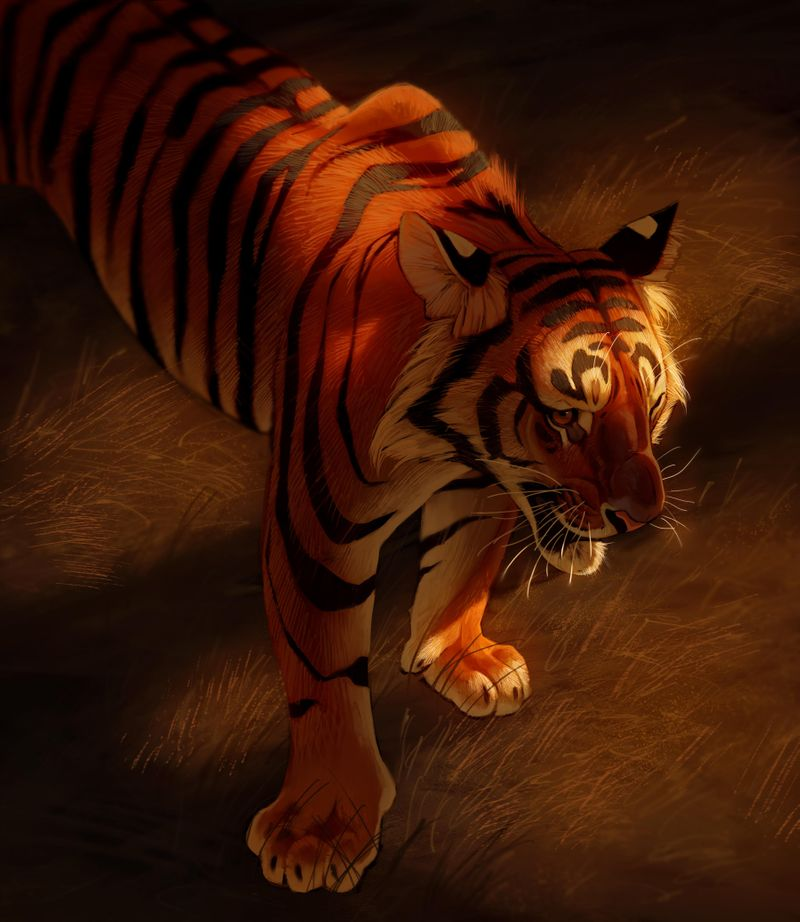 Sunsettiger (wecompress.com).jpg