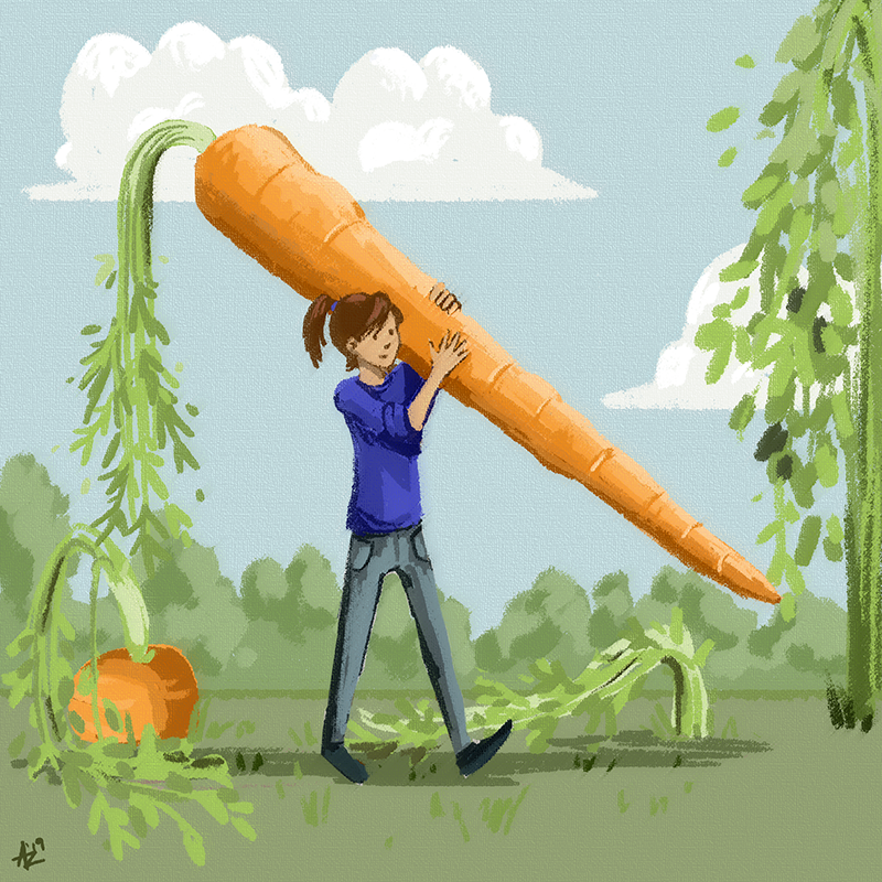 carrots(small).png