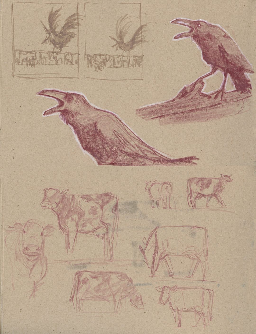 crowSketches2_LoRes.jpg