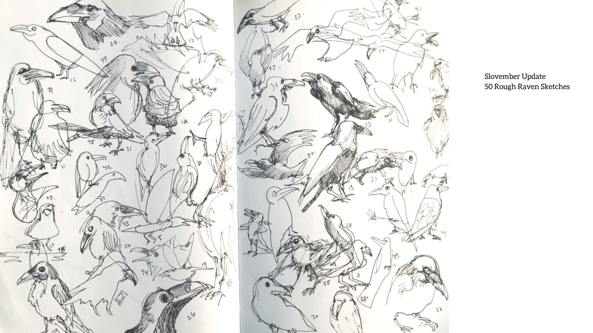 Slovember Update 50 Rough Raven Sketches (3).jpg