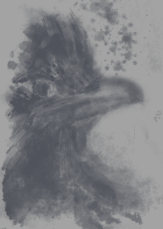 Roadrunner Under Sketch Aug 19 2020.PNG