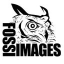Fossi Images